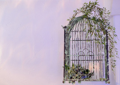 Love Birds Birdcage